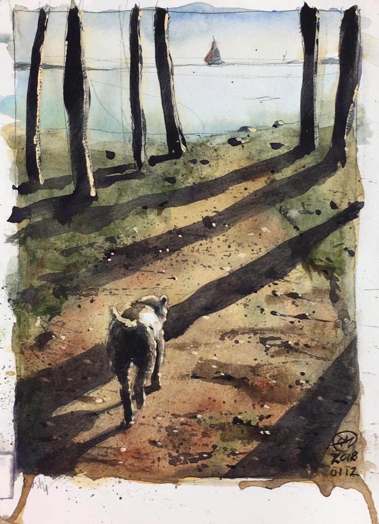 Dog approaching Sandhamn beach